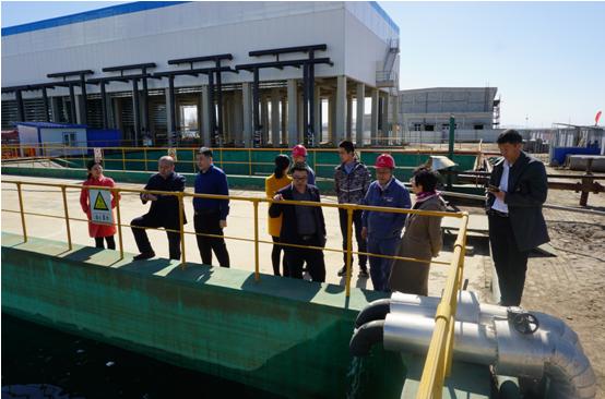 岱海湖水生态环境综合治理项目稳步推进