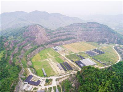 废弃矿山变身 现代农业园