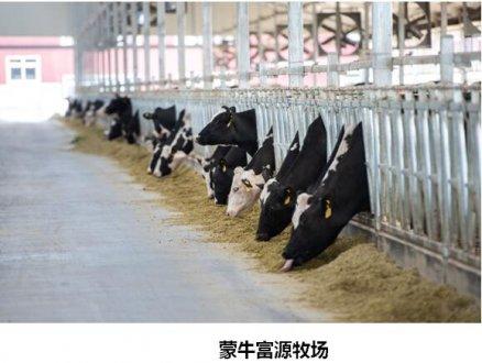助力脱贫攻坚 蒙牛打造有竞争力的民族奶业