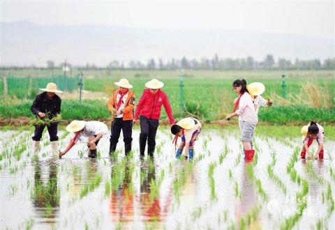 内蒙古呼和浩特:体验农耕 育美童心