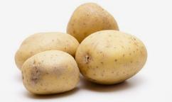土豆种得好,可以拿奖励!