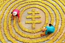 内蒙古开展粮食保证基金调研巡查