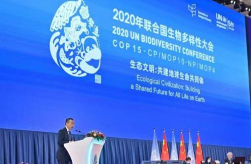 蒙牛卢敏放出席COP15高级别会议:生态化乳业有助于捍